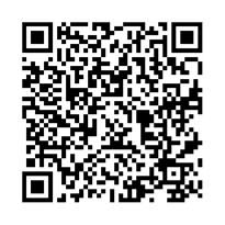 QR link for An Assessment of Aerospace Campaigns in 2010